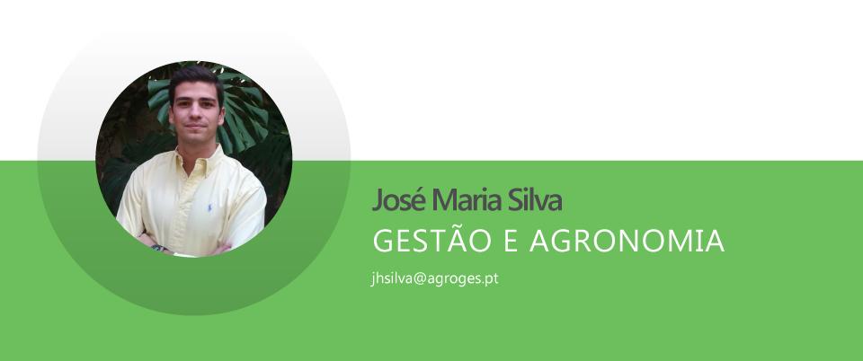 José Maria Henriques da Silva